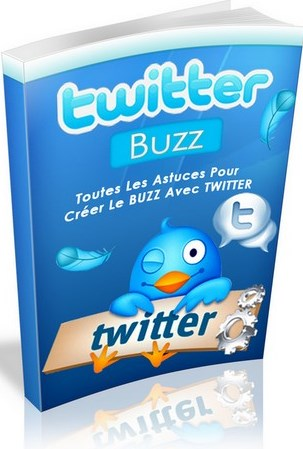 ebook revenus twitter internet
