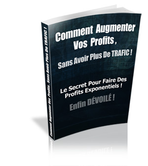 comment augmenter vos profits, sans avoir plus de trafic